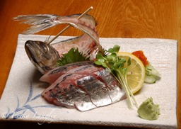 Aji (Spanish mackerel)